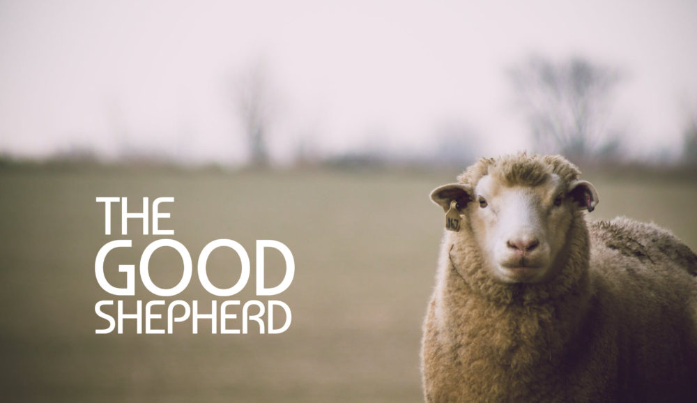 Stand Alone: The Good Shepherd