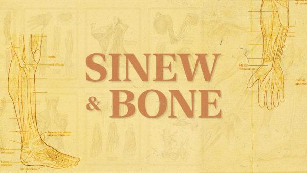 Sinew & Bone