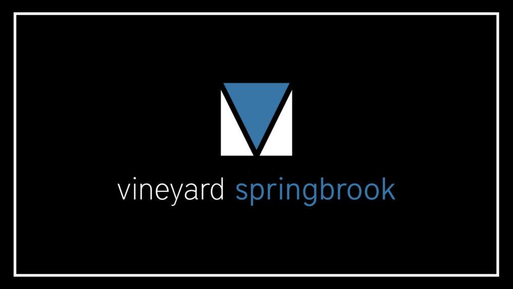 Vineyard Springbrook Classes